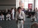 American Okinawan Karate Association