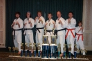 American Okinawan Karate Association