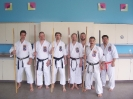 Hanshi Albert Mady Seminar April 2009