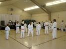 Hanshi Mady Seminar Nov. 2009